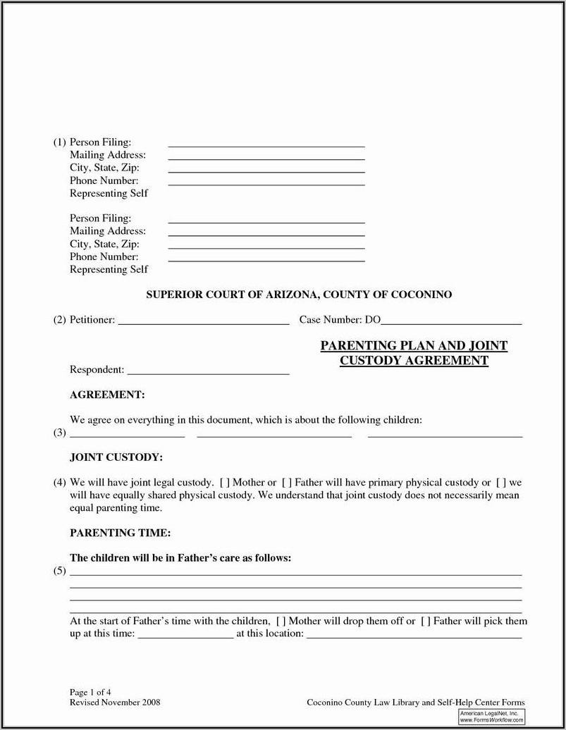 North Carolina Emergency Custody Form