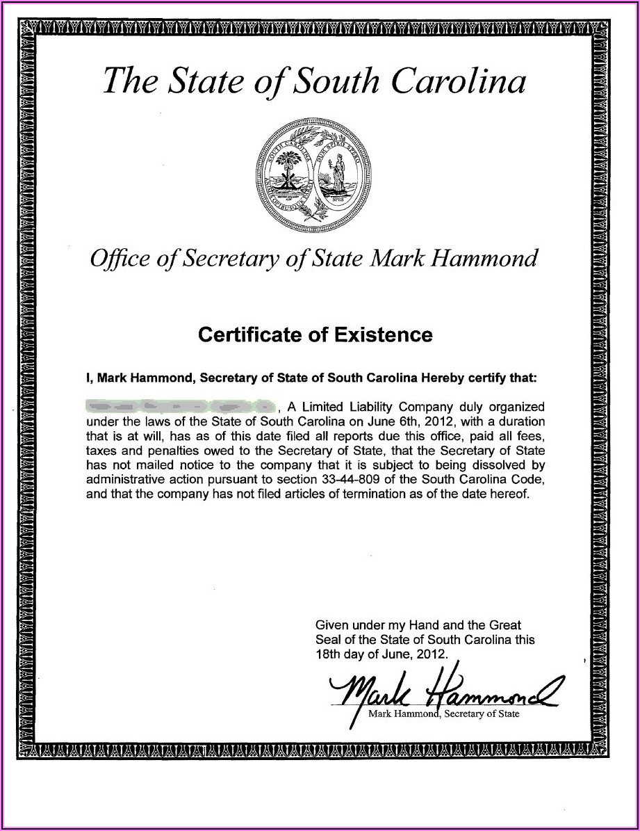 South Carolina Secretary Of State Llc Forms
