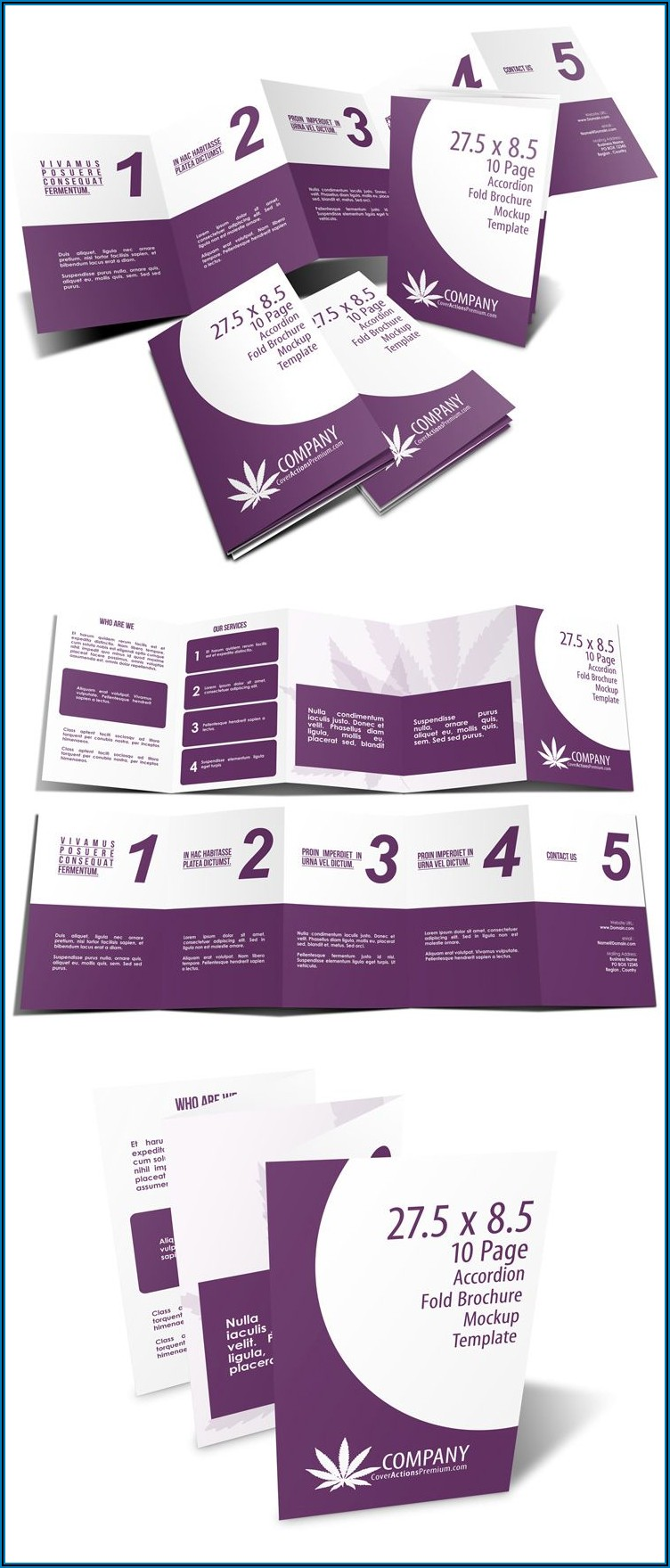 5 Fold Accordion Brochure Mockup