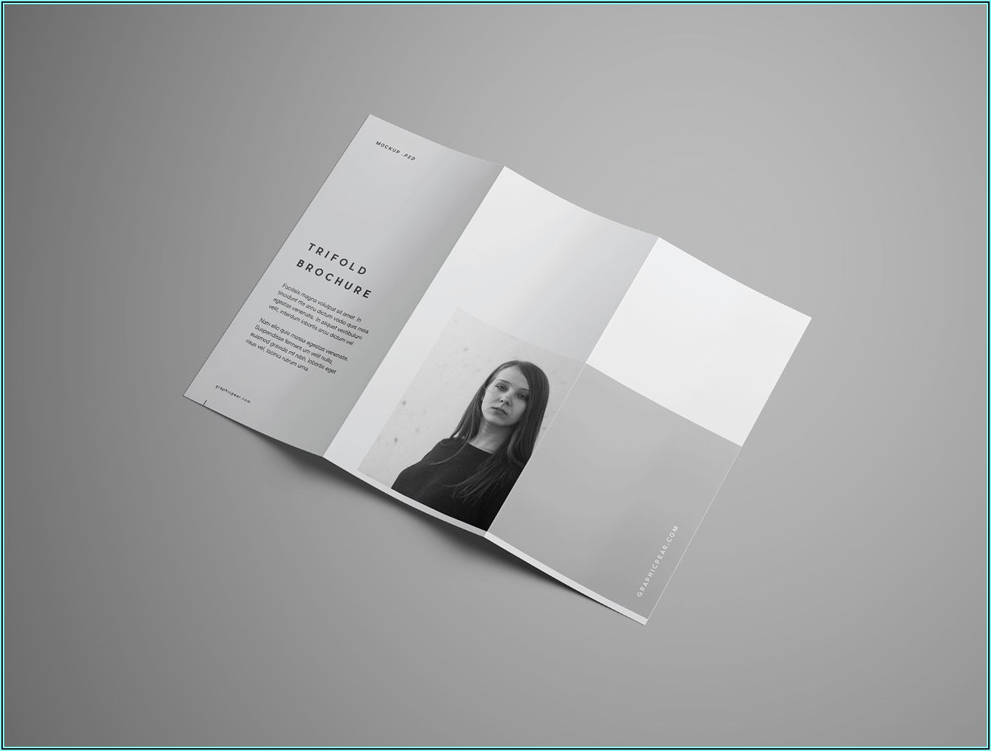 A4 Trifold Brochure Mockup Free