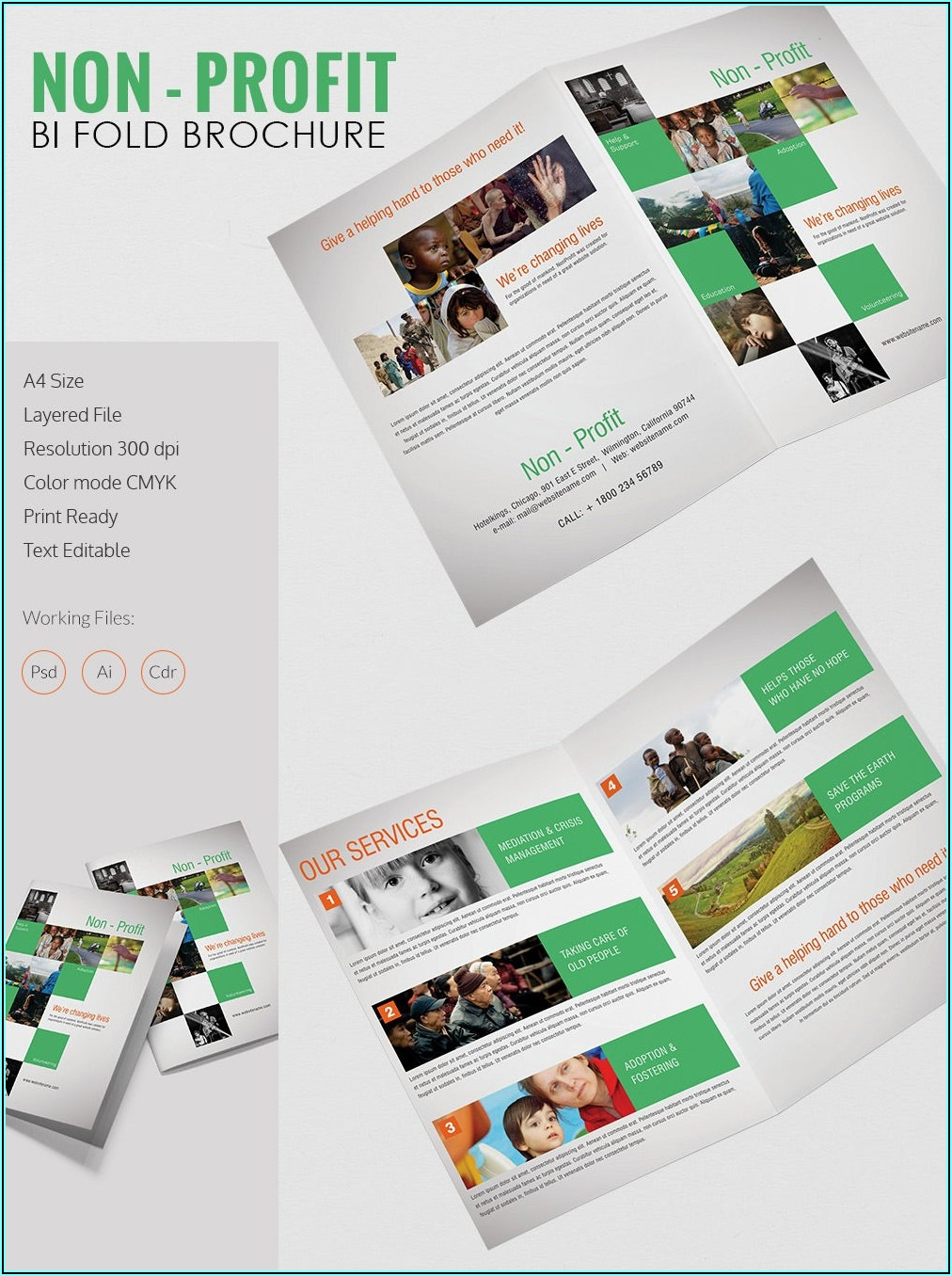 Bi Fold Brochure Template Free Download Microsoft Word