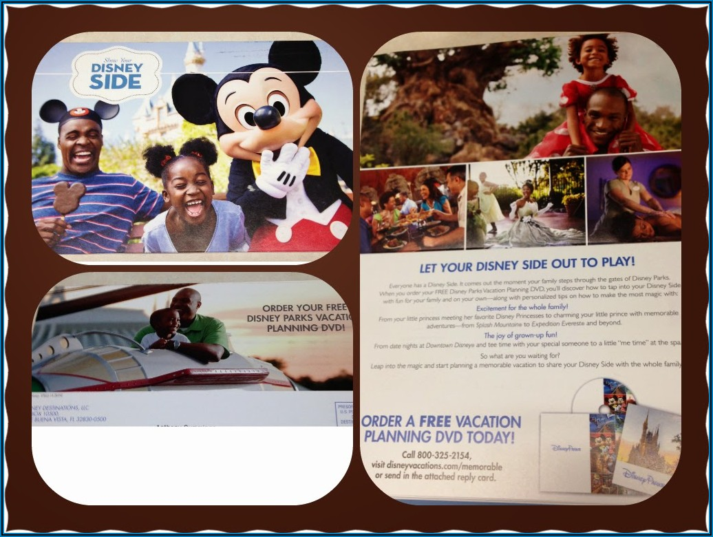 Disney World Brochure Mail