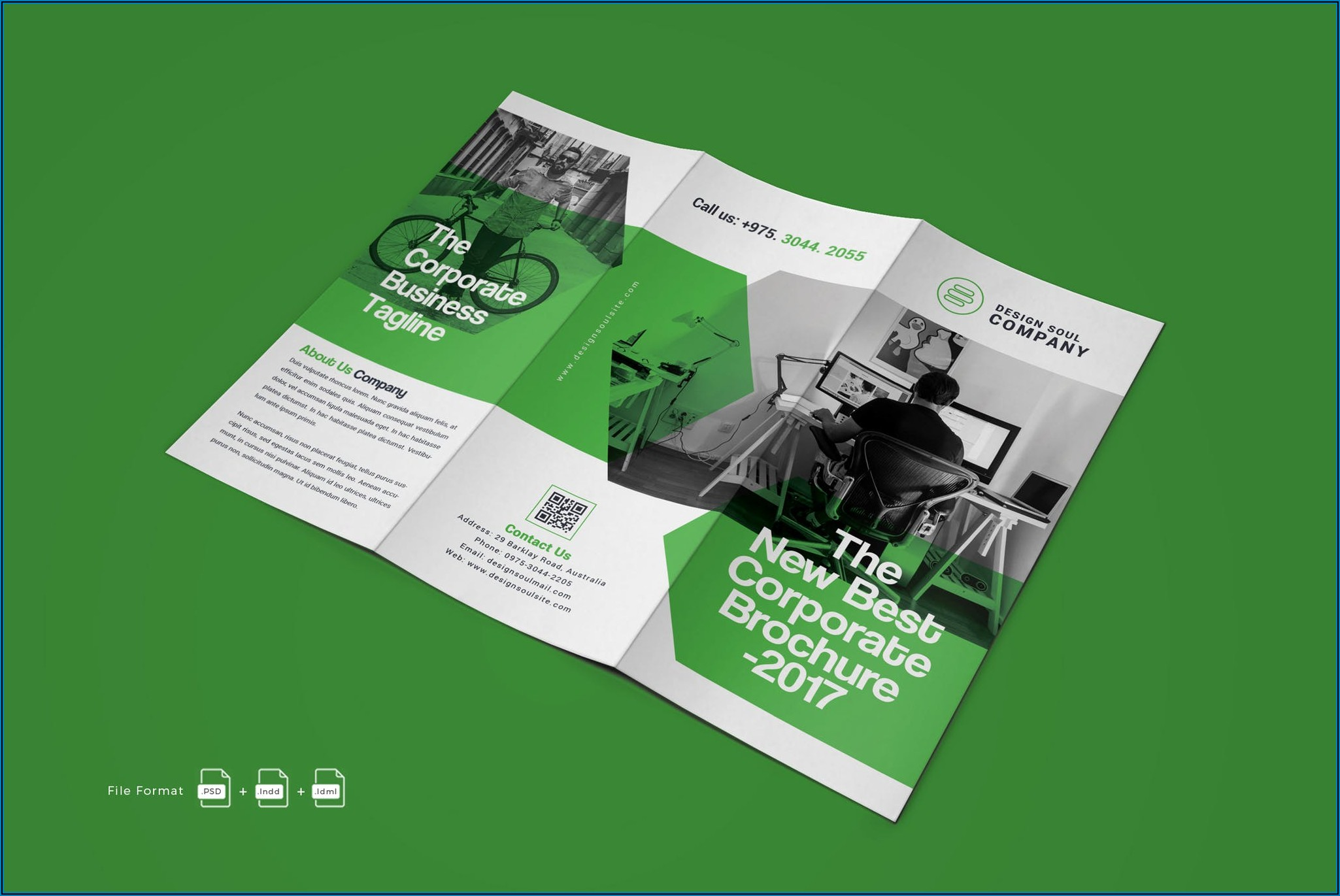 Download Tri Fold Brochure Template Indesign
