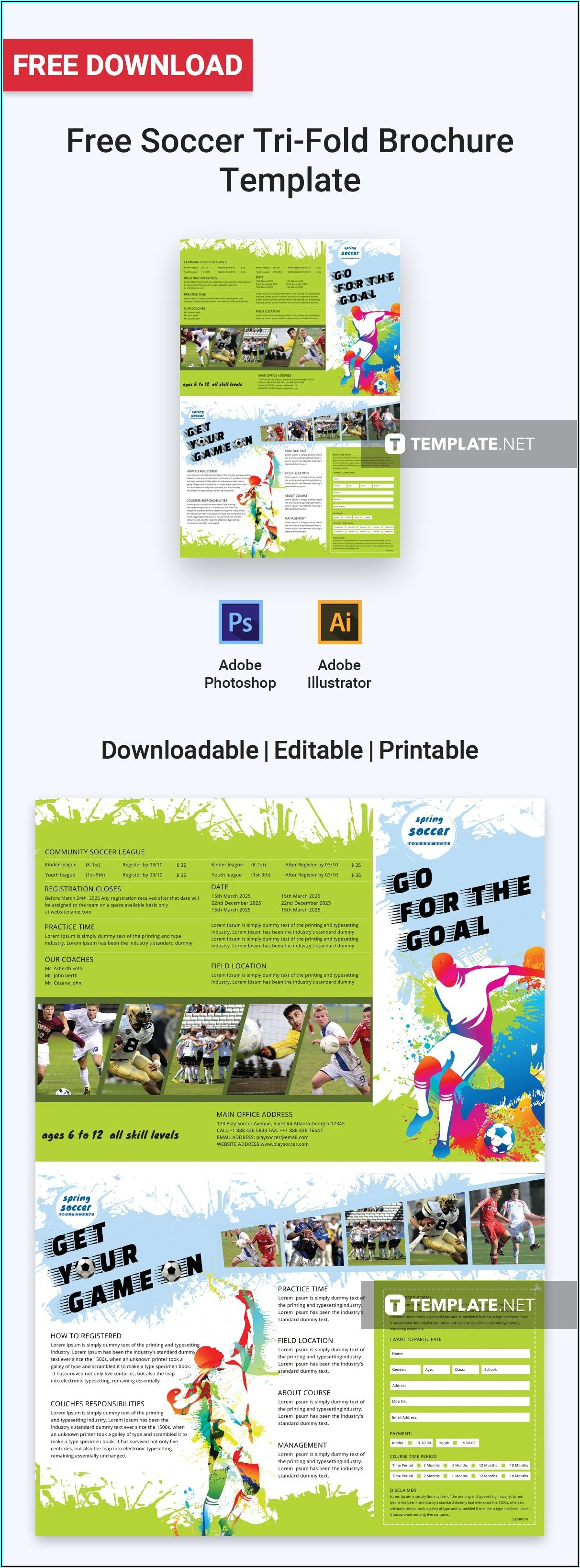 Tri Fold Brochure Template Microsoft Publisher Free