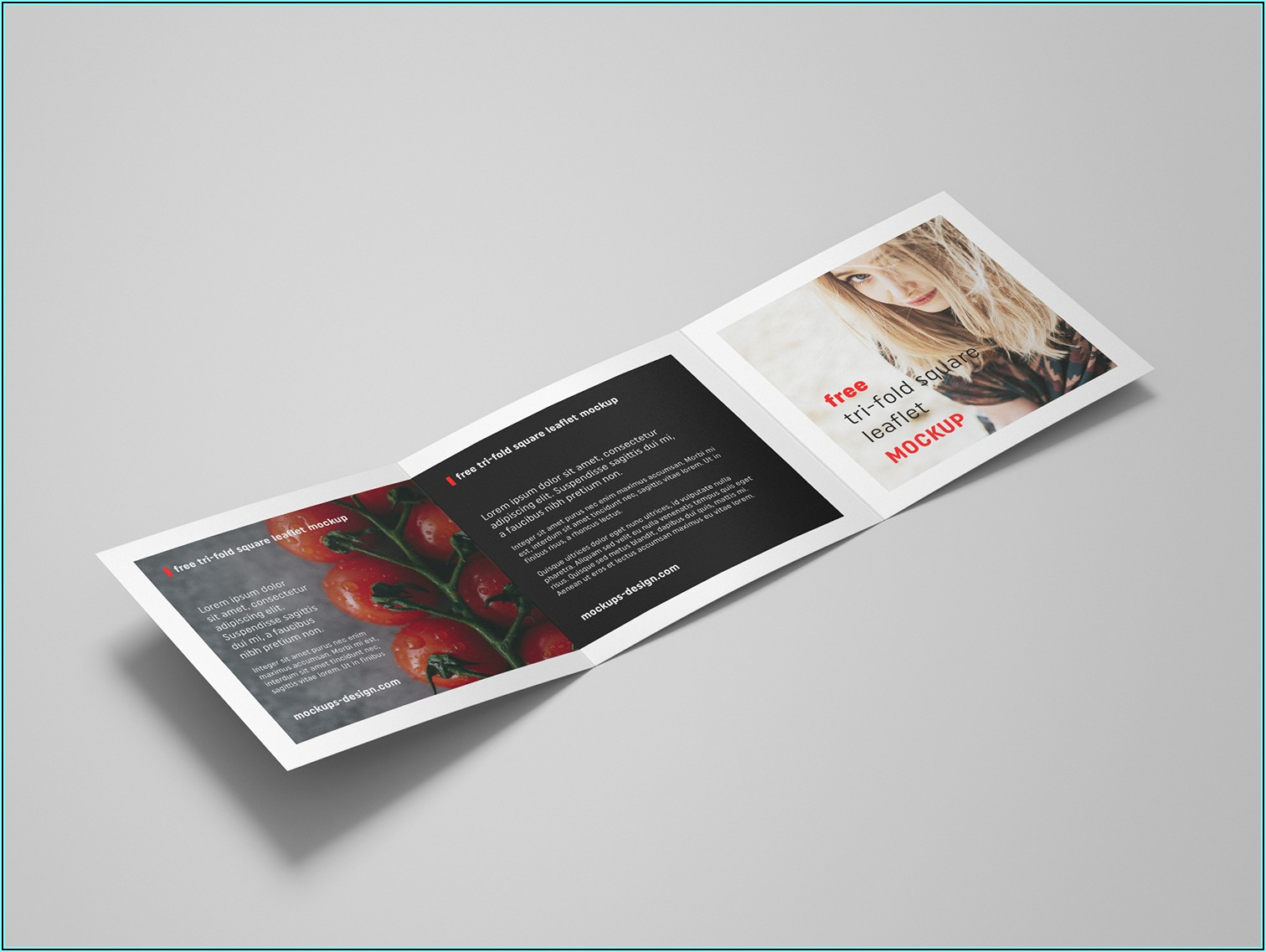 Tri Fold Square Brochure Mockup Free