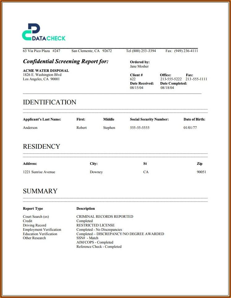 Employee Background Verification Report Format