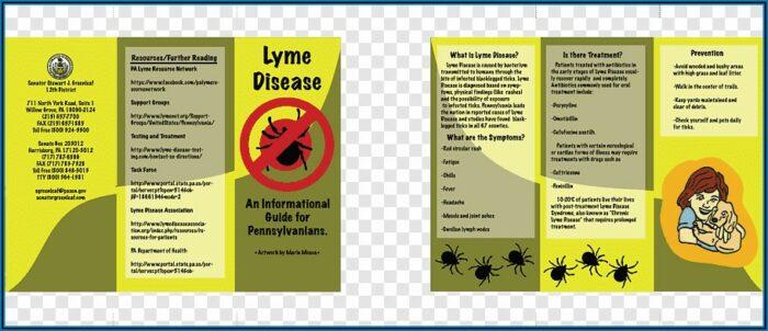 Free Lyme Disease Pamphlets