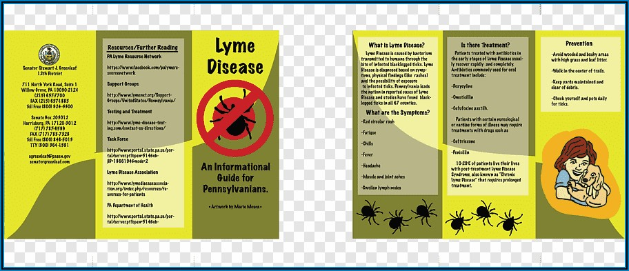 Free Lyme Disease Pamphlets