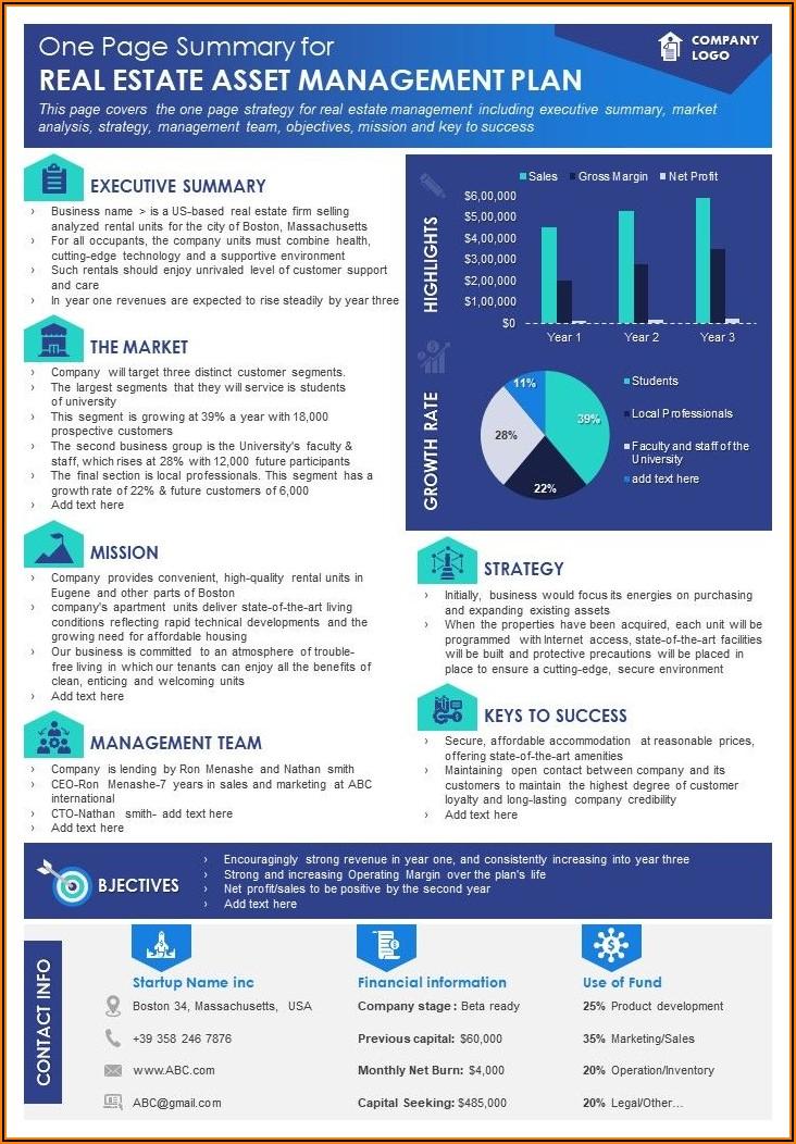 Real Estate Marketing Plan Template Pdf