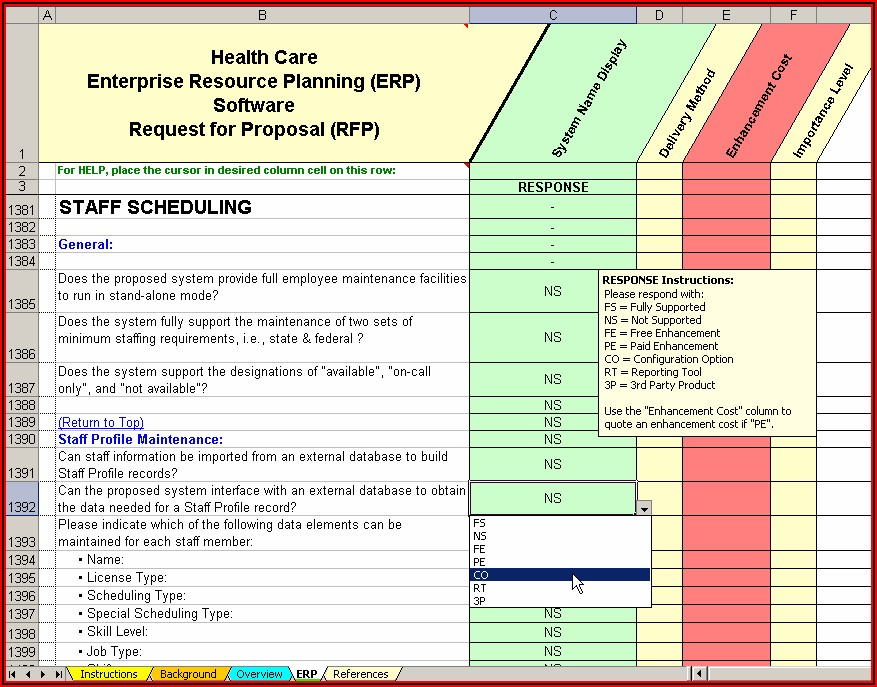Software Rfp Template Excel