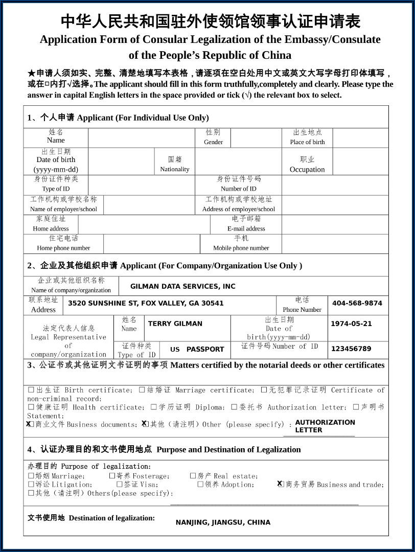 Chinese Embassy Z Visa Application Form