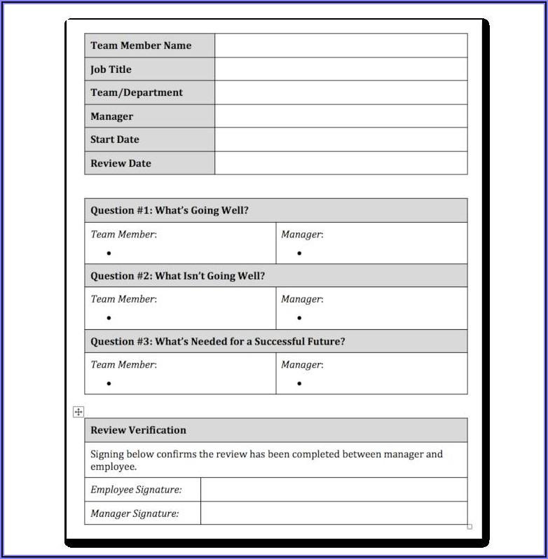 Performance Appraisal Form Word
