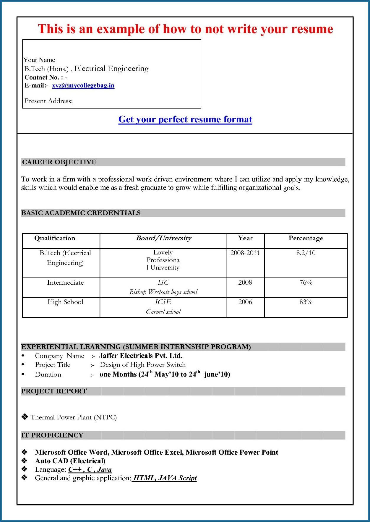 Resume Format In Microsoft Word 2007 Free Download