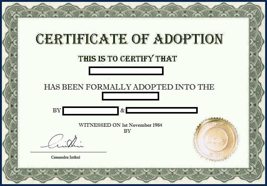 Step Parent Adoption Papers Texas