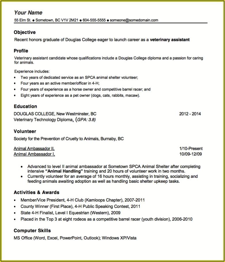 Vet Tech Resume Examples