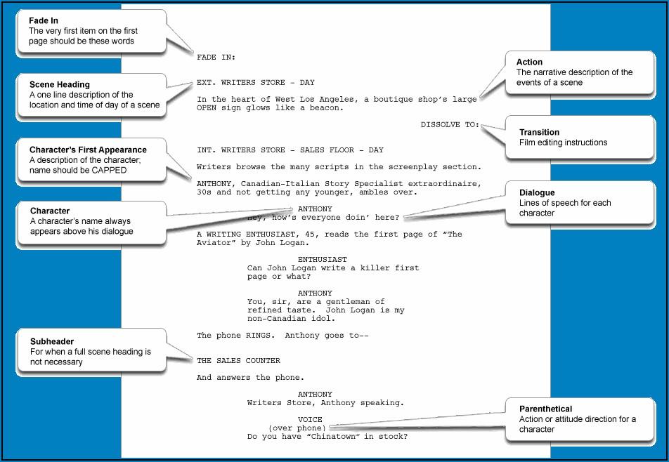 Whiteboard Animation Script Template