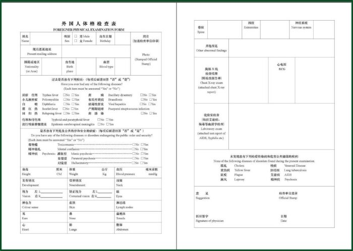 Application Form For Chinese Government Scholarship Pdf