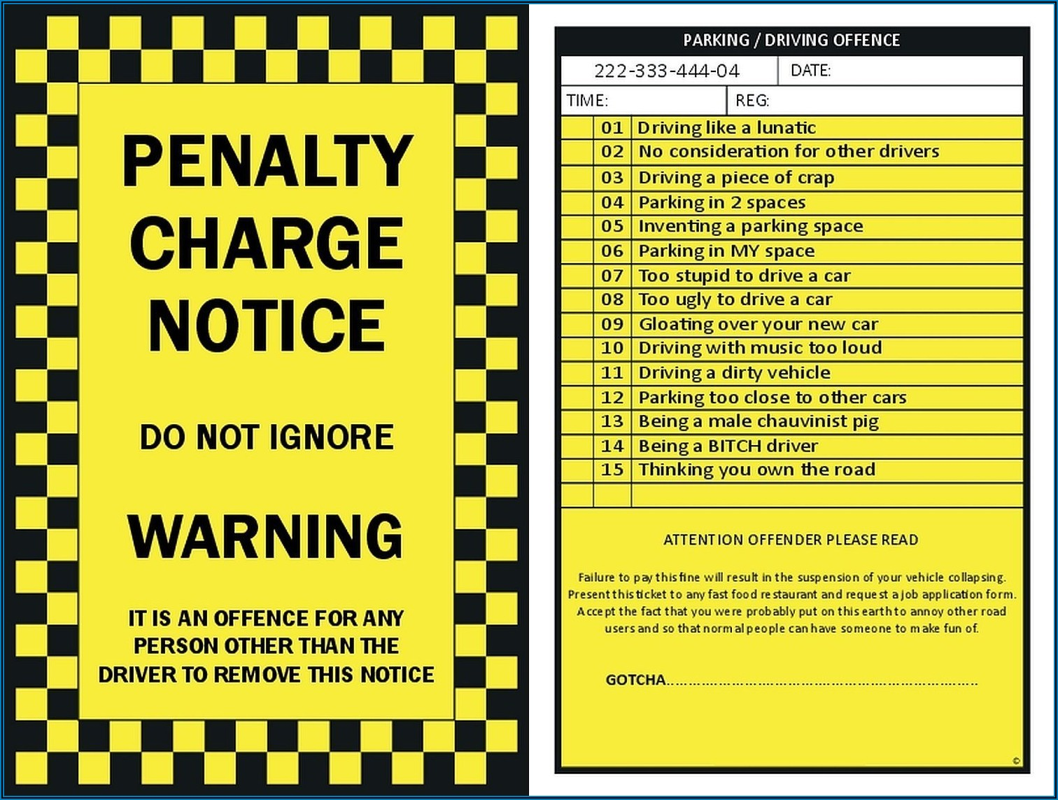 Police Ticket Template Pdf