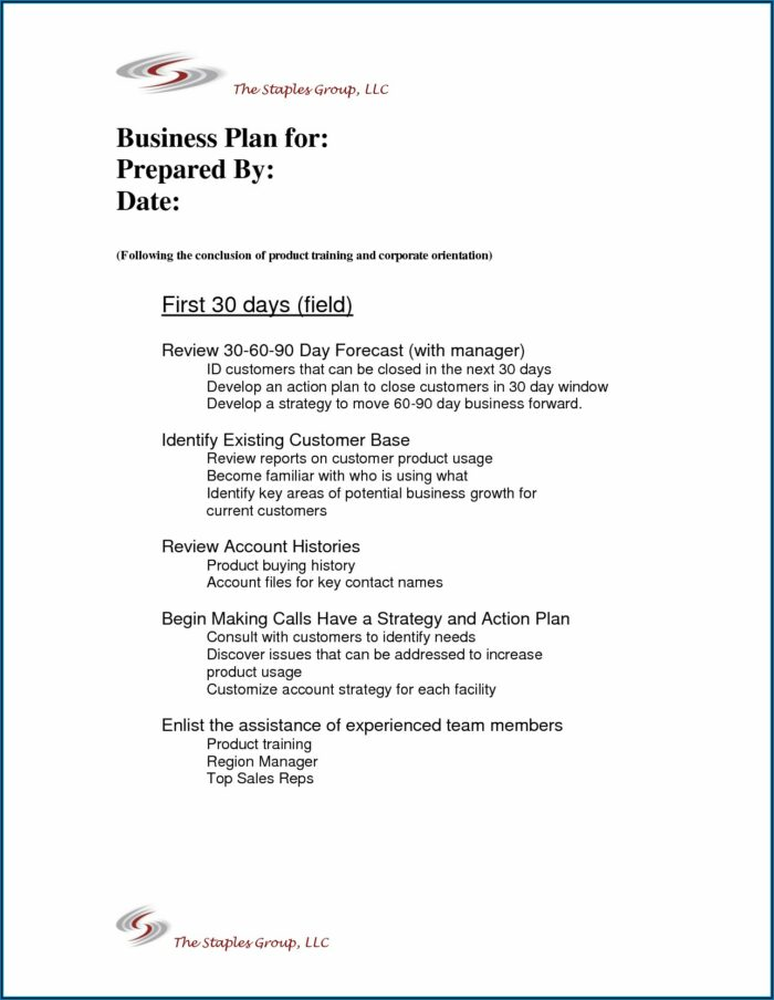 30 60 90 Day Medical Sales Plan Template Free