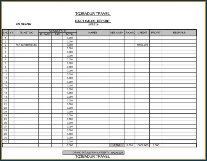 Daily Sales Call Report Format Excel