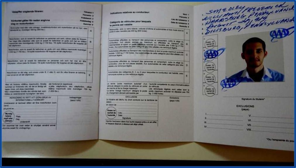 International Driver's License Application Form Jamaica