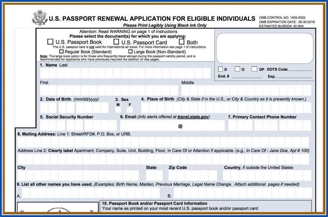 Passport Renewal Form Print