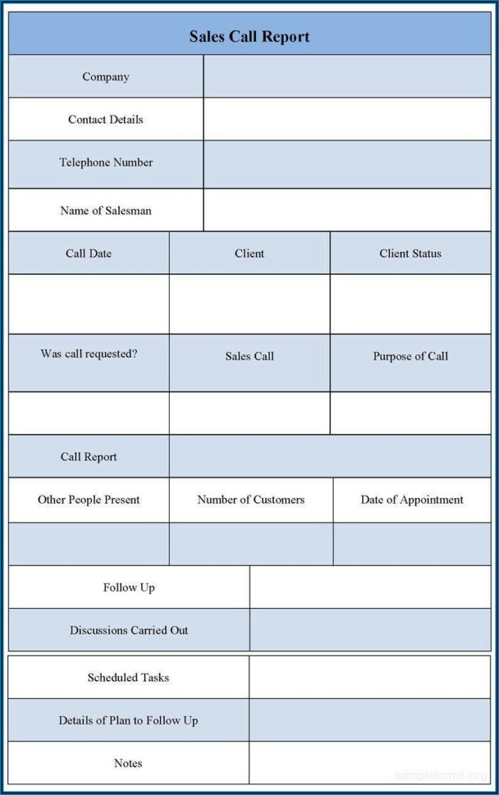 Sales Daily Call Report Template