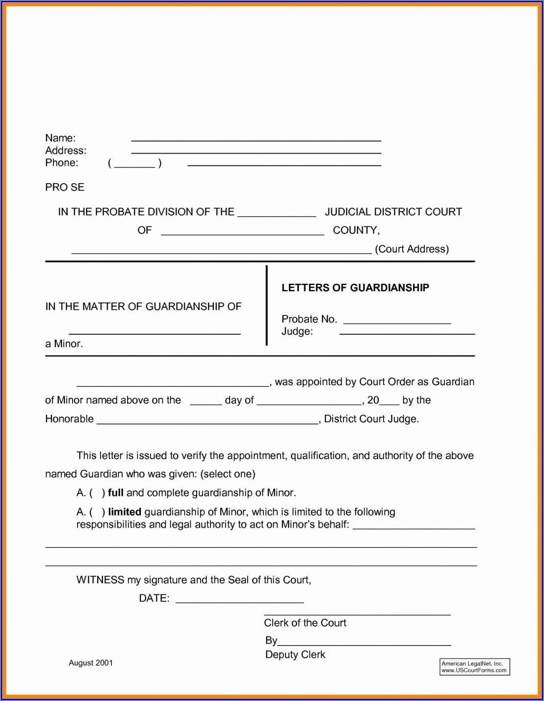 Temporary Custody Order Template