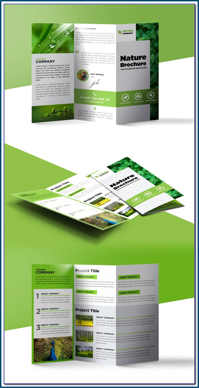 Tri Fold Brochure Design Templates Free Download Publisher