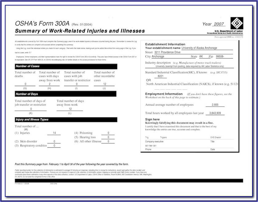Blank Osha 300a Form
