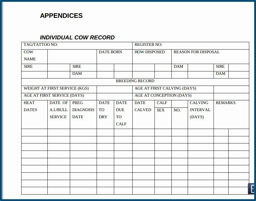 Cattle Record Keeping Excel Template