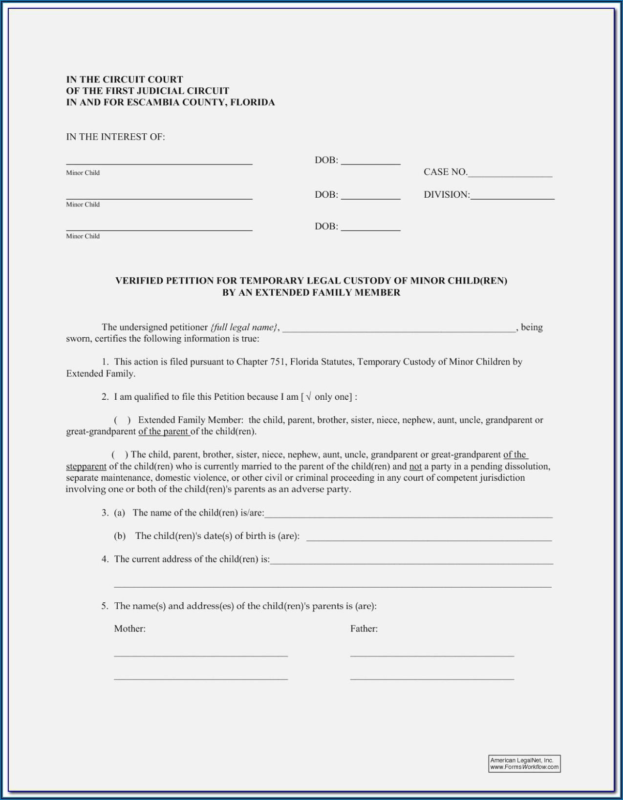 Free Legal Forms Texas Child Custody
