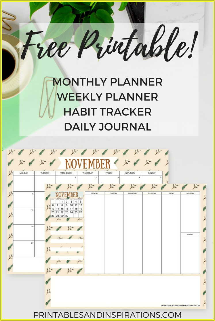 Free Monthly P&l Template
