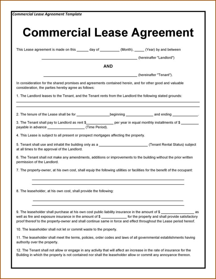 Landlord Tenant Agreement Form South Africa