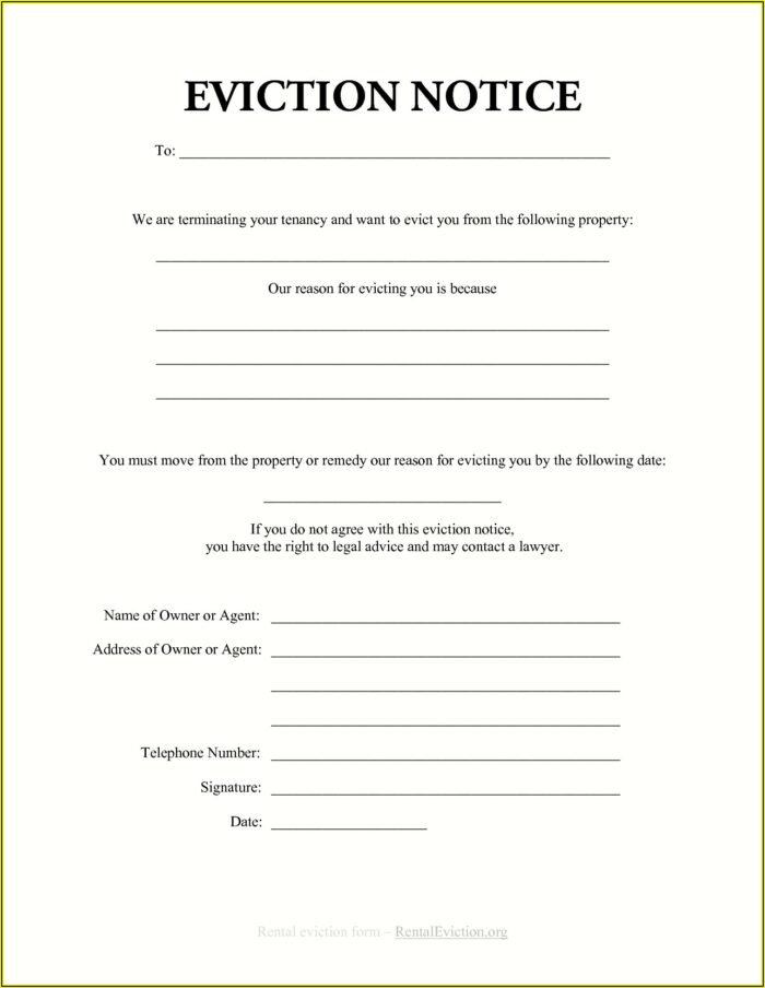 Tenant Eviction Notice Template Ontario