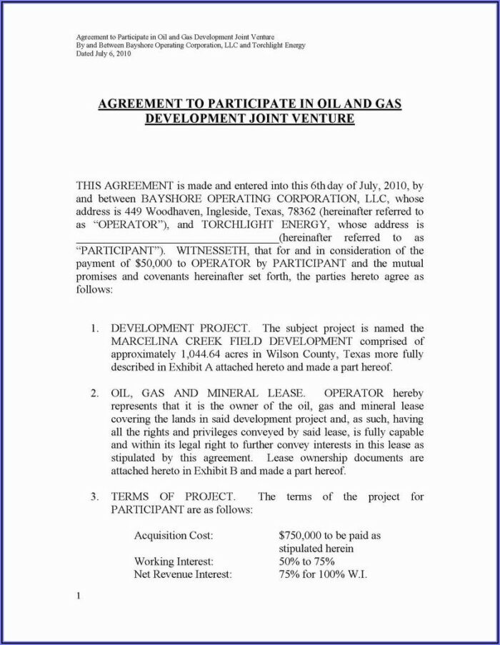 Assignment Of Oil And Gas Lease Form