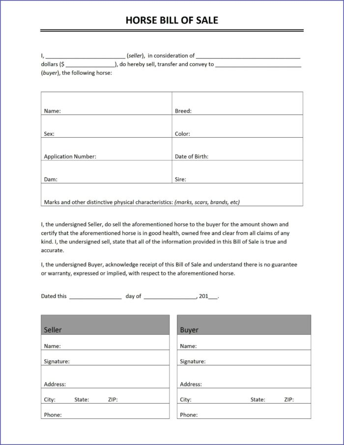 Simple Equine Bill Of Sale Form