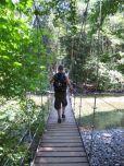 Grove of the Patriarchs Trail Mt Rainier National Park