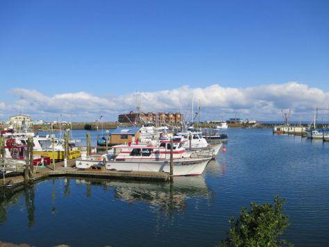 Westport Harbor WA