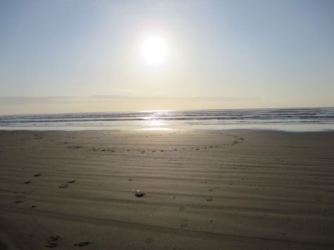 Grayland Beach WA