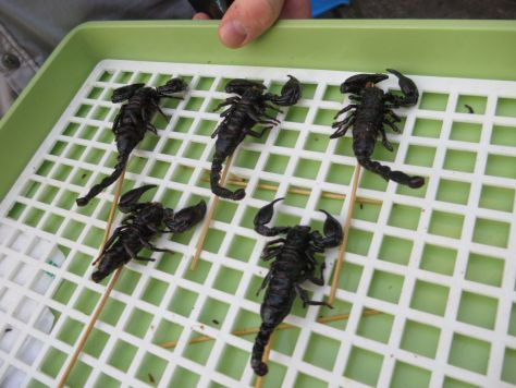 fried scorpions Khao San Road Bangkok Thailand 407
