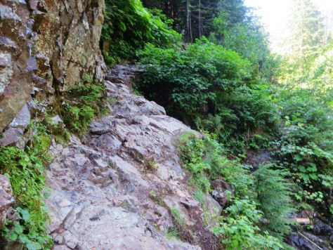 Franklin Falls day hike WA Rocky ledge back up to the trail