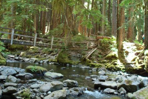 Lover's Lane trail Olympic National Park romantic getaways