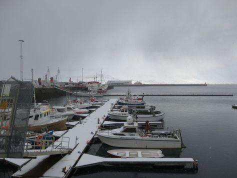 Reykjavik harbor Iceland