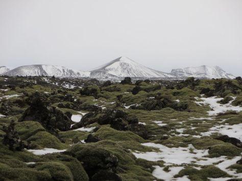 Iceland 394