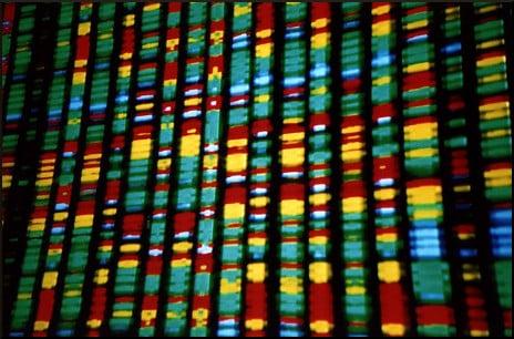 DNA representation