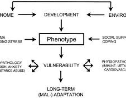 child trauma and genes interaction