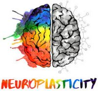 Recovery: How the Brain can 'Rewire' Itself (Neuroplasticity). 2
