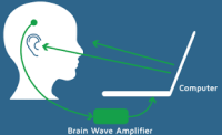Neurofeedback And Reducing Activity In Brain's Fear Circuitry. 1