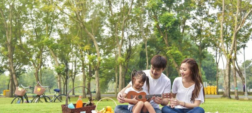 Tips For Creating The Best Family Picnic